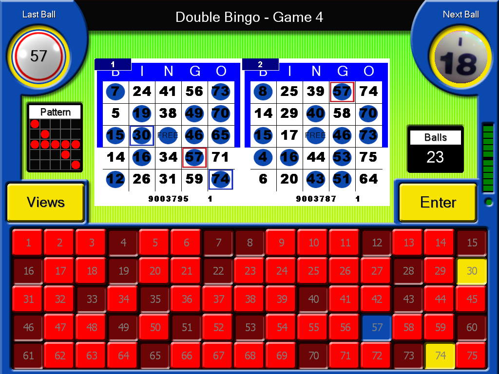 Best 2 Bingo Cards with Flashboard